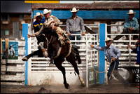 2011 090311 Rodeo_0173 rt